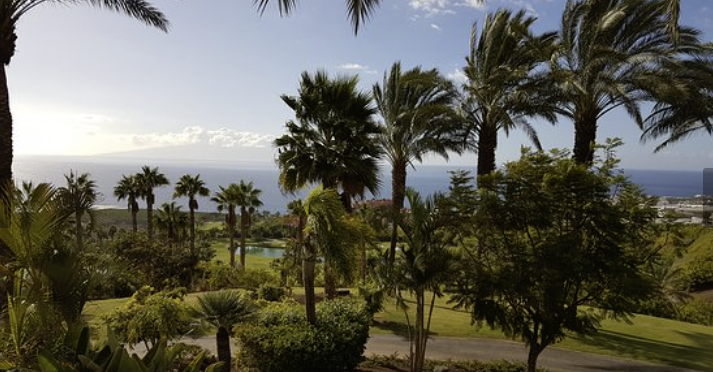 1 bed Land For Sale in Tenerife,  - 9