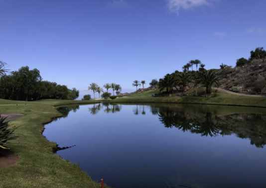 1 bed Land For Sale in Tenerife,  - 18