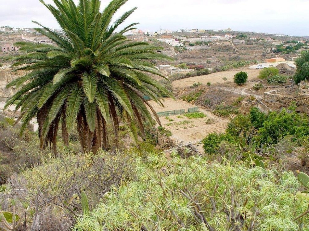 1 bed Land For Sale in ,